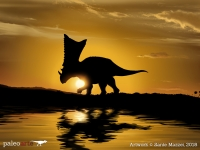 Chasmosaurus at Sunset
