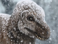 Tyrannosaurus into the snow